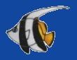 Logo von Christa und Michael